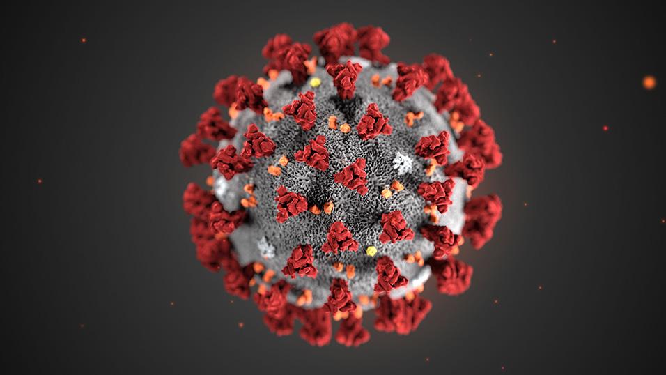 Emergenza Coronavirus: Sospensione delle attività didattiche dal 5 al 15 marzo 2020